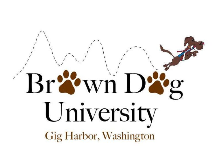 Brown Dog Univ Logo
